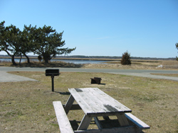 a campsite at Salisbury Beach State Reservation